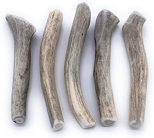 Perfect Pet Chews Deer Antler Dog Chew - Grade A, All Natural, Organic, and Long Lasting Treats - Made from Naturally Shed Antlers in The USA