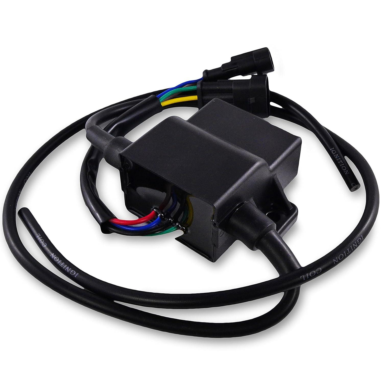Polaris OEM Ignition Controller Coil CDI Module 4010696 Sportsman 700 2002-2004 by Polaris