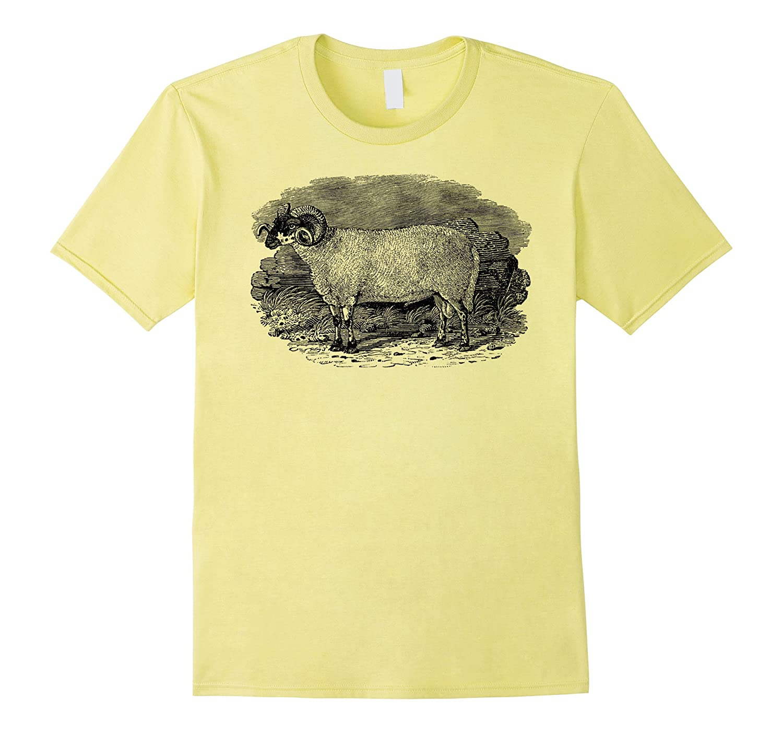 Big Texas Sheep Ram T-Shirt