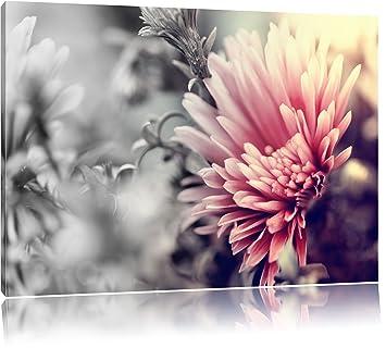 Romantische Blumen Schwarz Weiss Format 120x80 Auf Leinwand Xxl