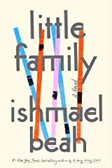 Little Family: A Novel (English Edition) eBook Kindle