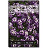 Sow Right Seeds - Sweet Alyssum Flower Seeds for Planting, Beautiful Flowers to Plant in Your Garden; Non-GMO Heirloom…