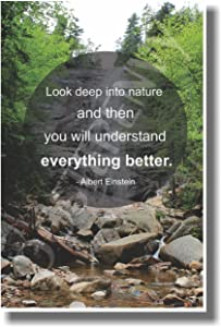 Look Deep Into Nature and Then You Will Understand Everything Better - Albert Einstein - NEW Ecology Classroom Motivational Quote Poster