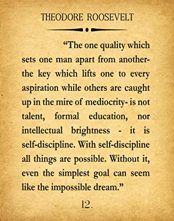Amazon Theodore Roosevelt Quote Roosevelt Self
