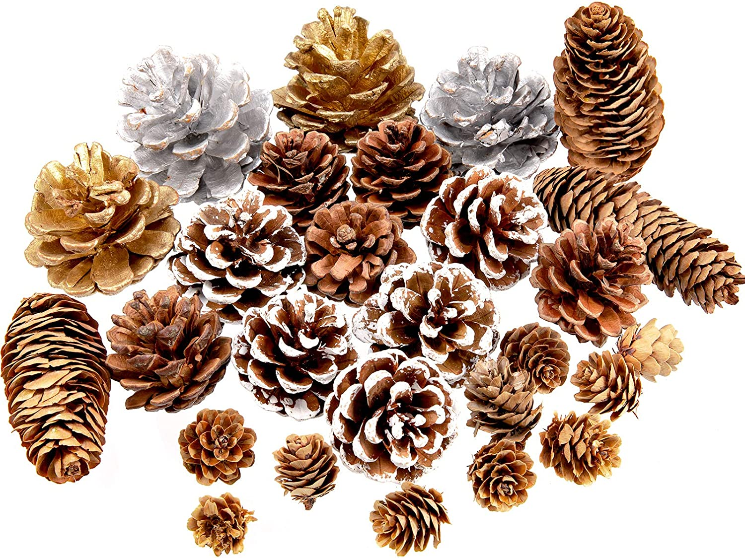 Whaline 27Pcs Christmas Pine Cones Natural Pinecones Silver Gold Snow Pin Cones Spruce Pine Cones for Crafts Gift Holiday Home Party Decoration, 6 Styles, Assorted Sizes