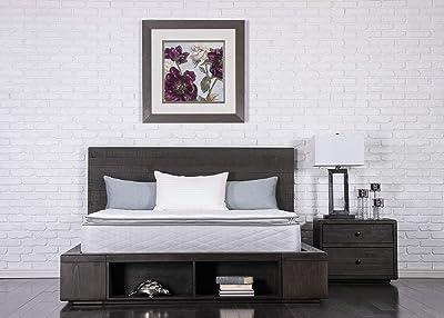 Dreamfoam Bedding Doze Plush Pillow Top Mattress
