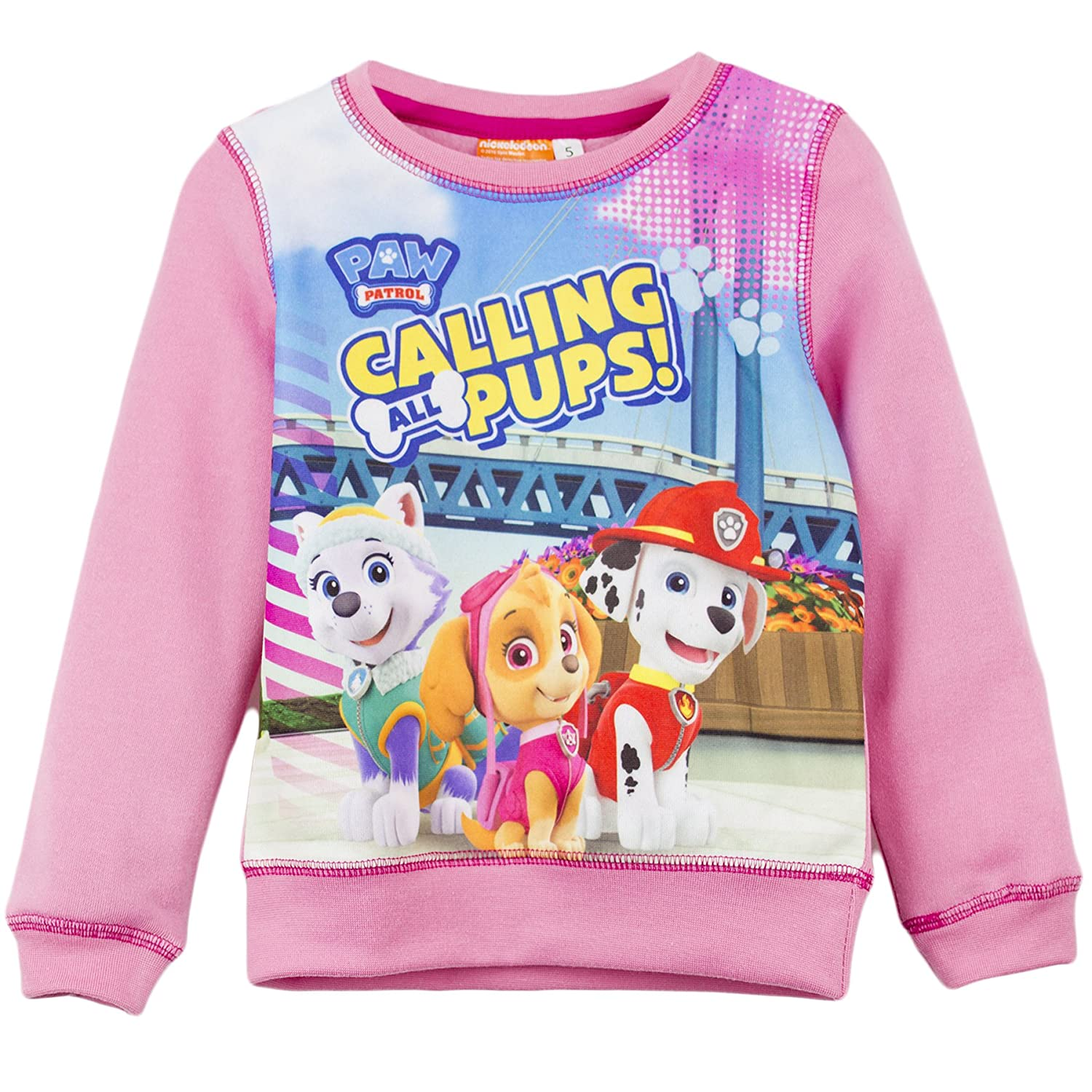 Nickelodeon Paw Patrol Girls Jumper Sweatshirt Long Sleeve Top 2-6 years:  Amazon.co.uk: Clothing