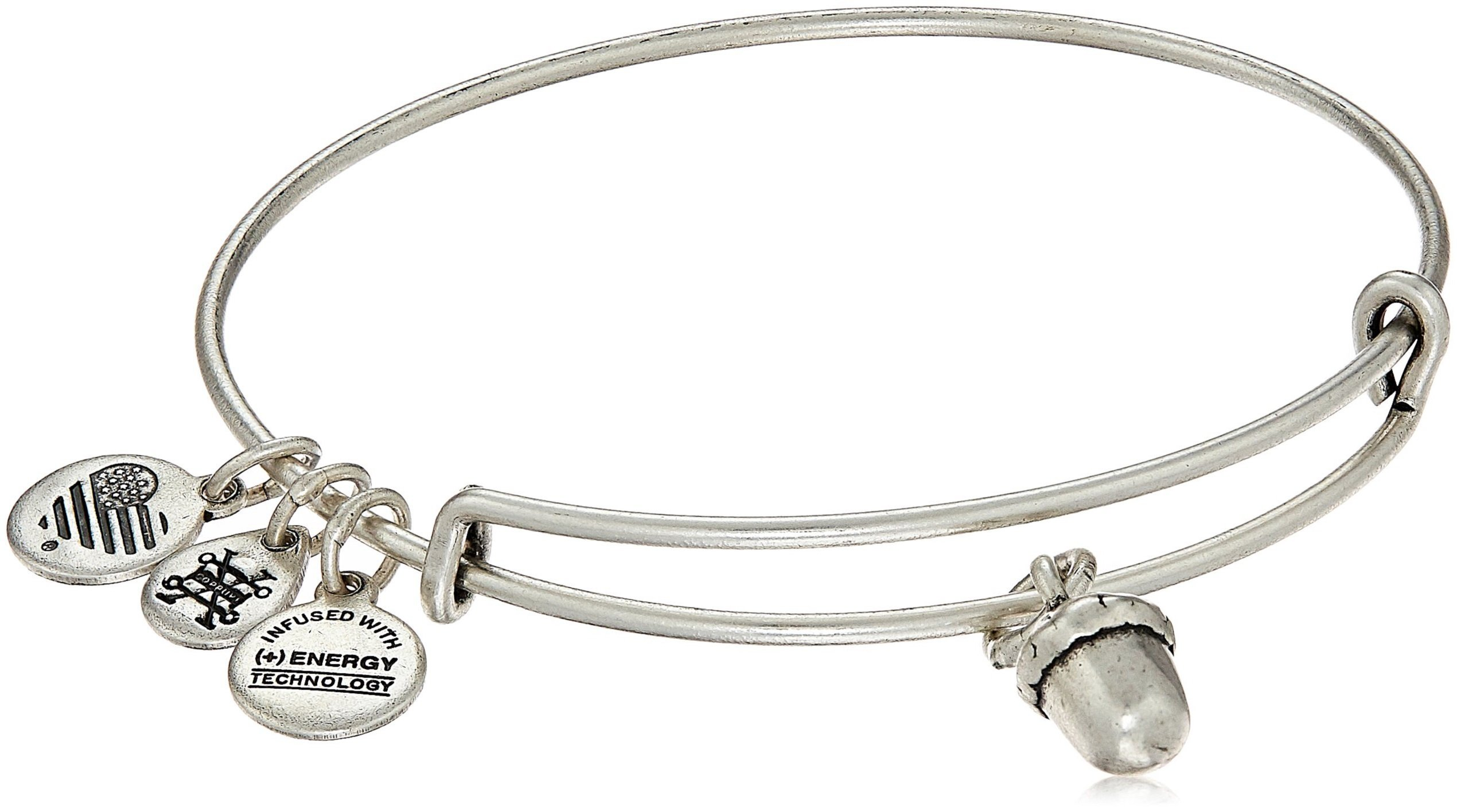 Alex and Ani Unexpected Blessings II Rafaelian Silver Bangle Bracelet by Alex and Ani