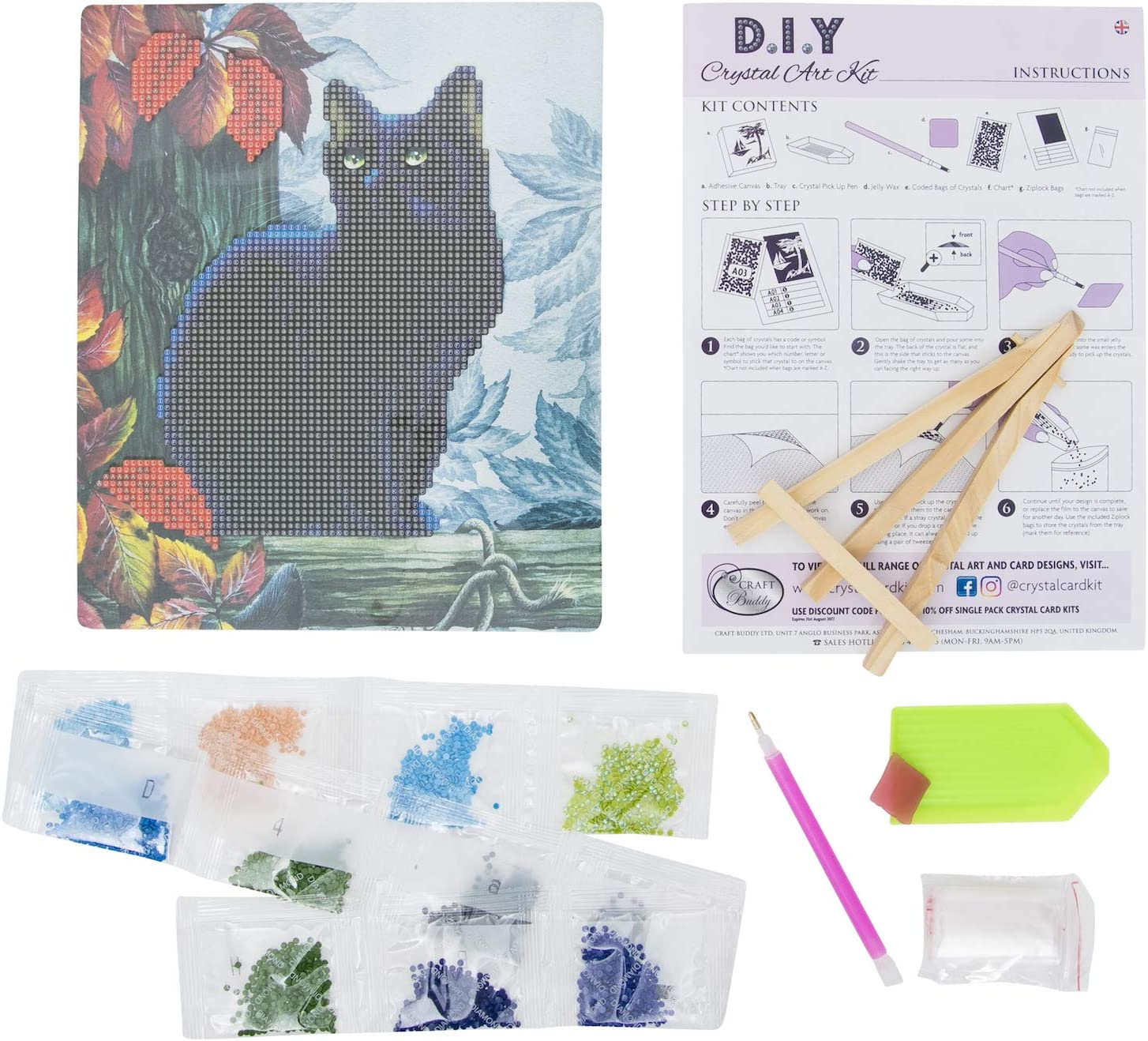 21cm x 25cm Choose from 3 Designs Craft Buddy DIY Crystal Art Picture Frame Kit