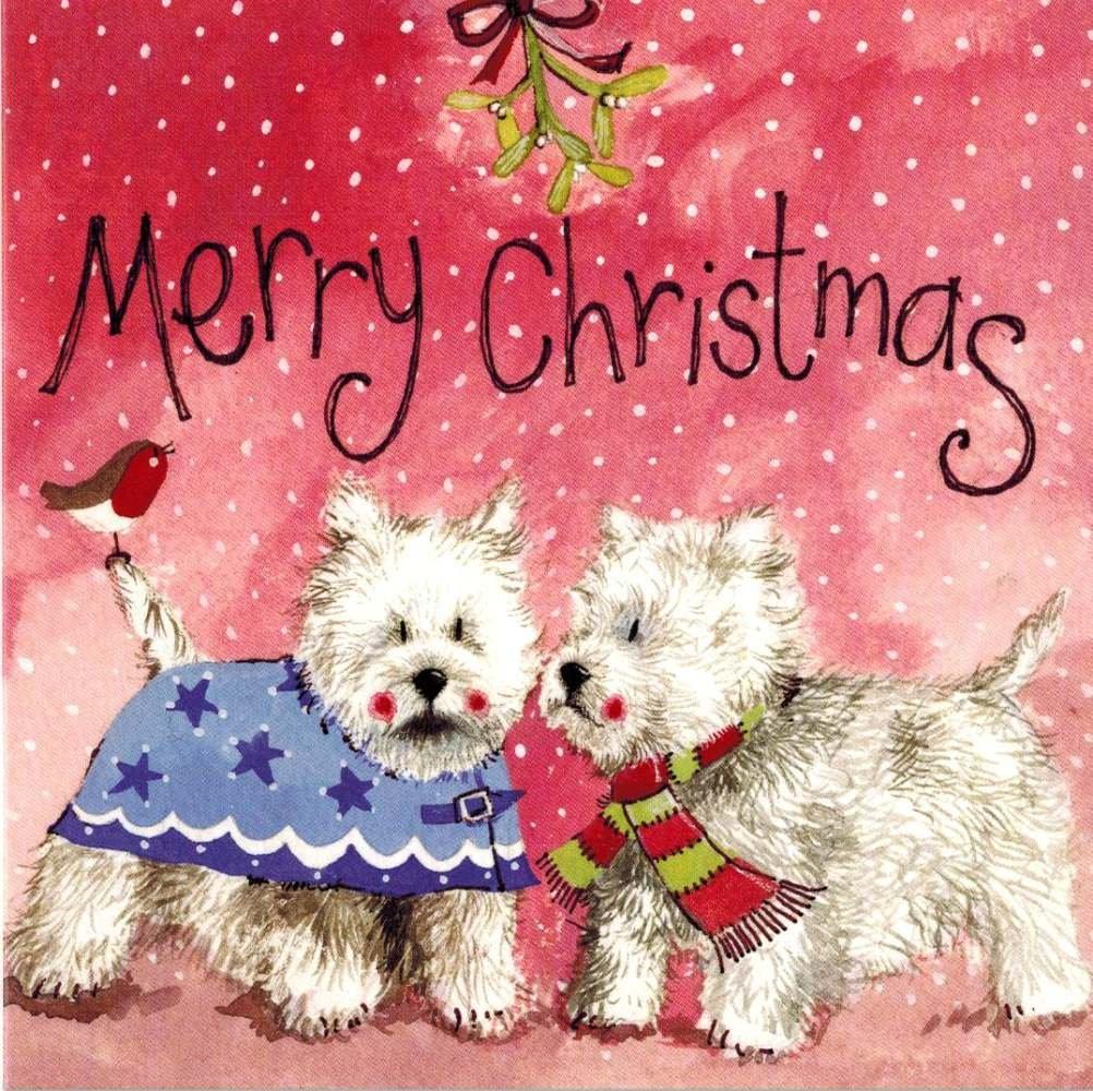 Amazon.com : Alex Clark Art Westie Wonderland Christmas Cards Set of ...