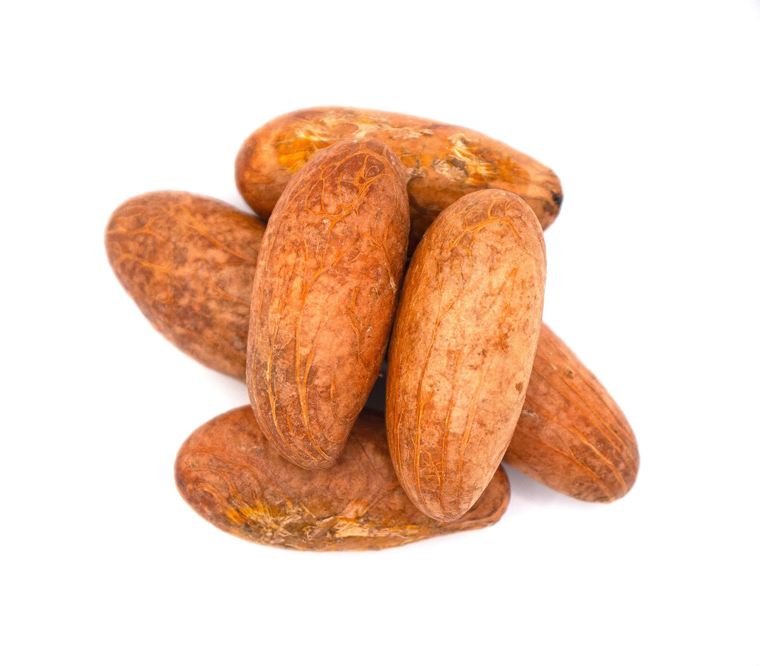African Bitter Kola Nuts 1lb