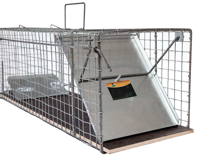 123jagd - Trampa para Gatos, martas y Conejos (116 x 26 x 28 cm): Amazon.es: Jardín