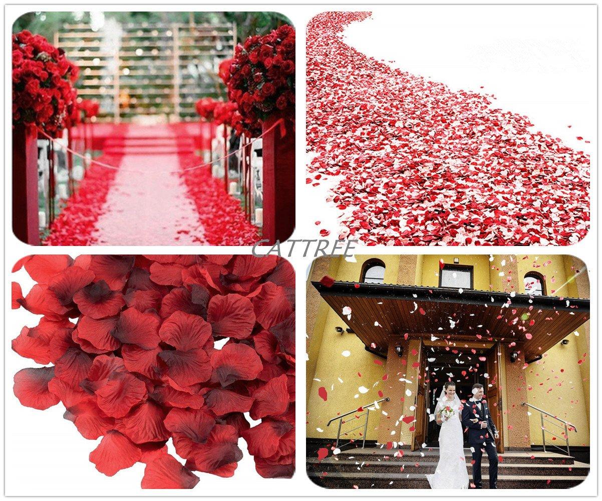 3000 PCS Silk Artificial Petals Vase Home Decor Wedding Bridal Decoration Wholesale Party Ceremony CATTREE Rose Petals White