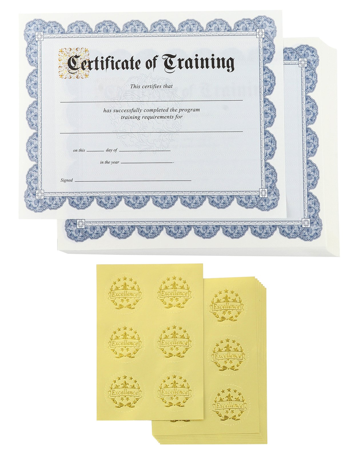 Certificate Papers – 48 Certificate of Training Award Certificates with 48 Excellence Gold Foil Seal Stickers, for Student, Teacher, Professor, Employee, Blue, 8.5 x 11 inches