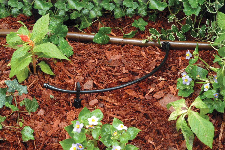 amazon com rain bird t22 250s drip irrigation 1 4