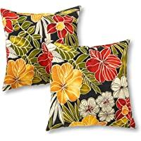 Greendale Home Fashions Outdoor Accent Pillows, Set of 2