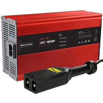 Amazon.com: FORM 18 AMP EZGO TXT cargador de batería para ...