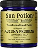 Sun Potion Organic Mucuna Pruriens Powder - 100 Grams (100 Gram)