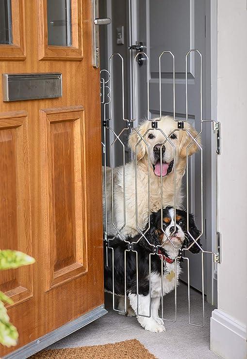 Puerta para perros para puertas delanteras, puertas interiores, puertas traseras, puertas correderas francesas, una puerta para perros que se puede fijar a cualquier puerta de madera o plástico.: Amazon.es: Productos para mascotas