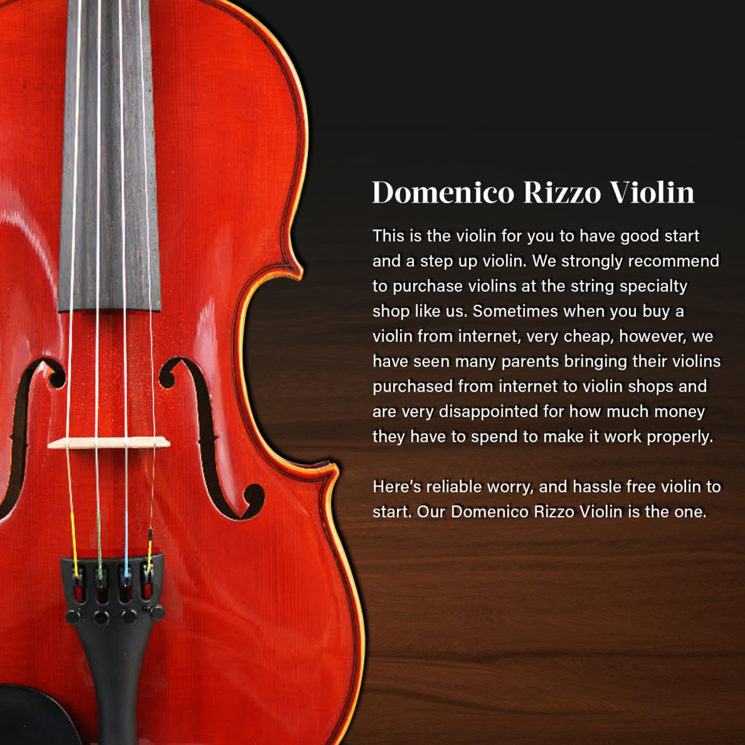 Domenico Rizzo Solidwood Ebony Fitted Violin with Thomastik Dominant  Strings, Size 3/4