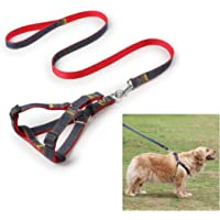 Lukzer Durable & Adjustable Harness with Leash for Small Medium Dogs Puppy Run Belt (44 Inch)