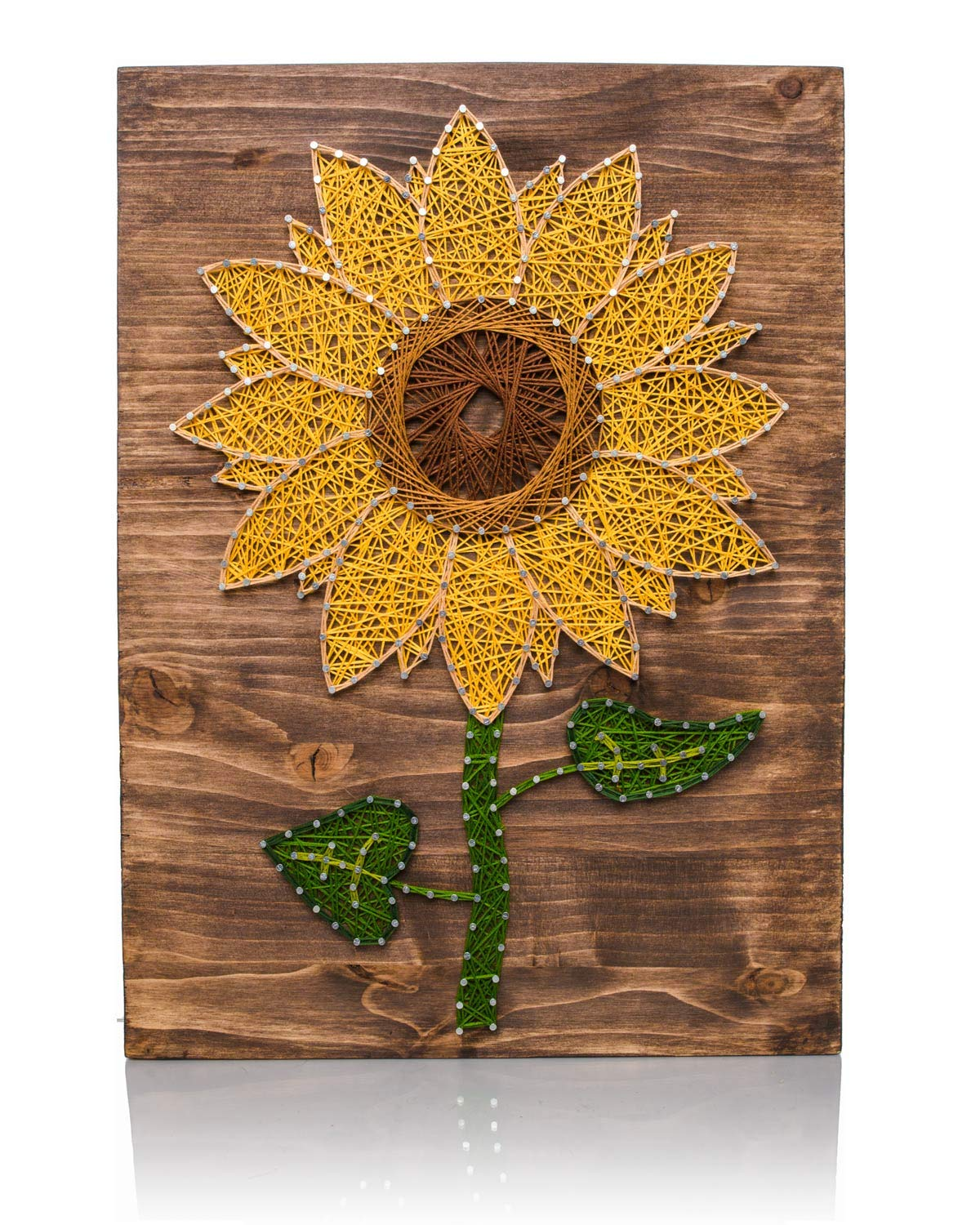 Amazon Com String Art Kit Sunflower String Art Arts And Crafts