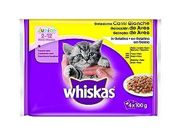Bolsitas para Gatos Pequeños Junior Selección Aves - [Pack de 13]: Amazon.es: Productos para mascotas