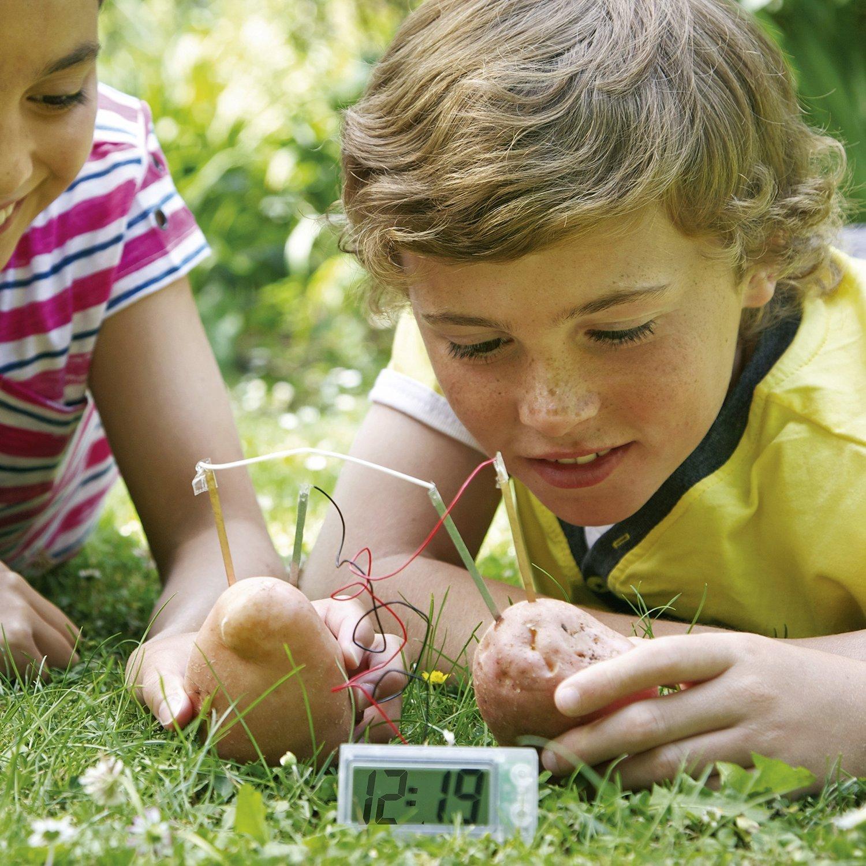 4M Green Science Orologio a Patata