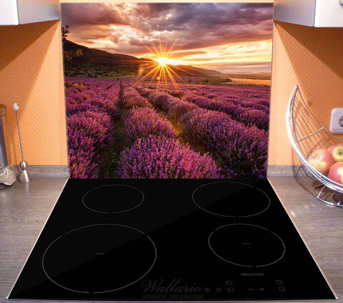 f/ür Ceran- und Induktionsherde Lavendelfeld bei Sonnenuntergang Wallario Herdabdeckplatte//Spritzschutz aus Glas Sonnenstrahlen 1-teilig 52x60cm