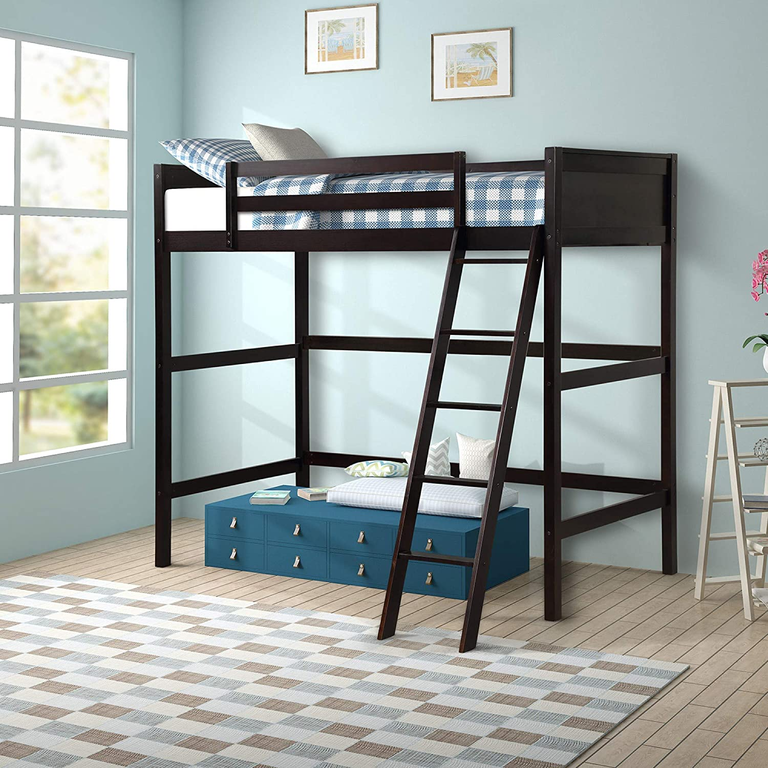 DERCASS High Side Angled Ladder Solid Wood Loft Bed Panel Style Loft Bed with Guard Rail, No Box Spring Needed (Espresso)