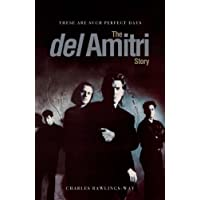 These Are Such Perfect Days: The Del Amitri Story