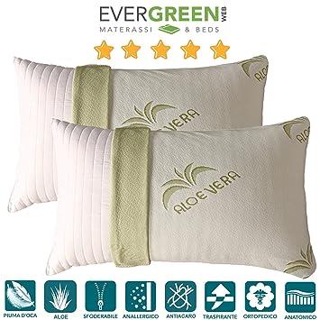 EvergreenWeb - Cojín Pluma de Ganso y algodón, Funda Aloe ...