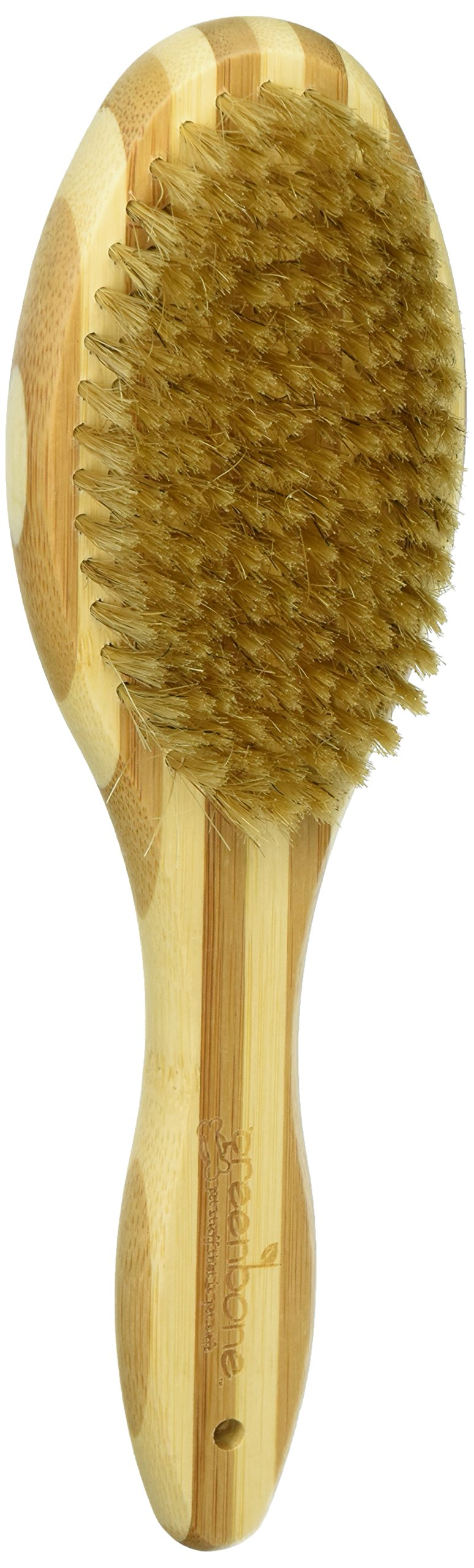 Greenbone All Natural Bamboo Pet Grooming Brushes - Made from Sustainable Materials (Bristle Brush) by Greenbone