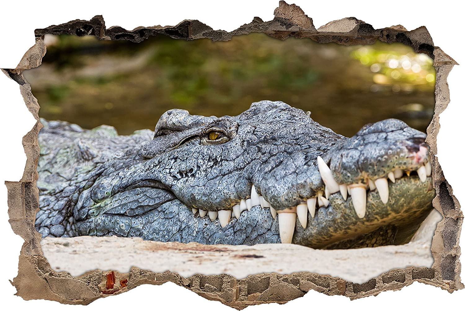 enormous big crocodile wall breakthrough in 3D look, wall or door sticker format: 62x42cm, wall stickers, wall sticker, wall decoration Stil.Zeit