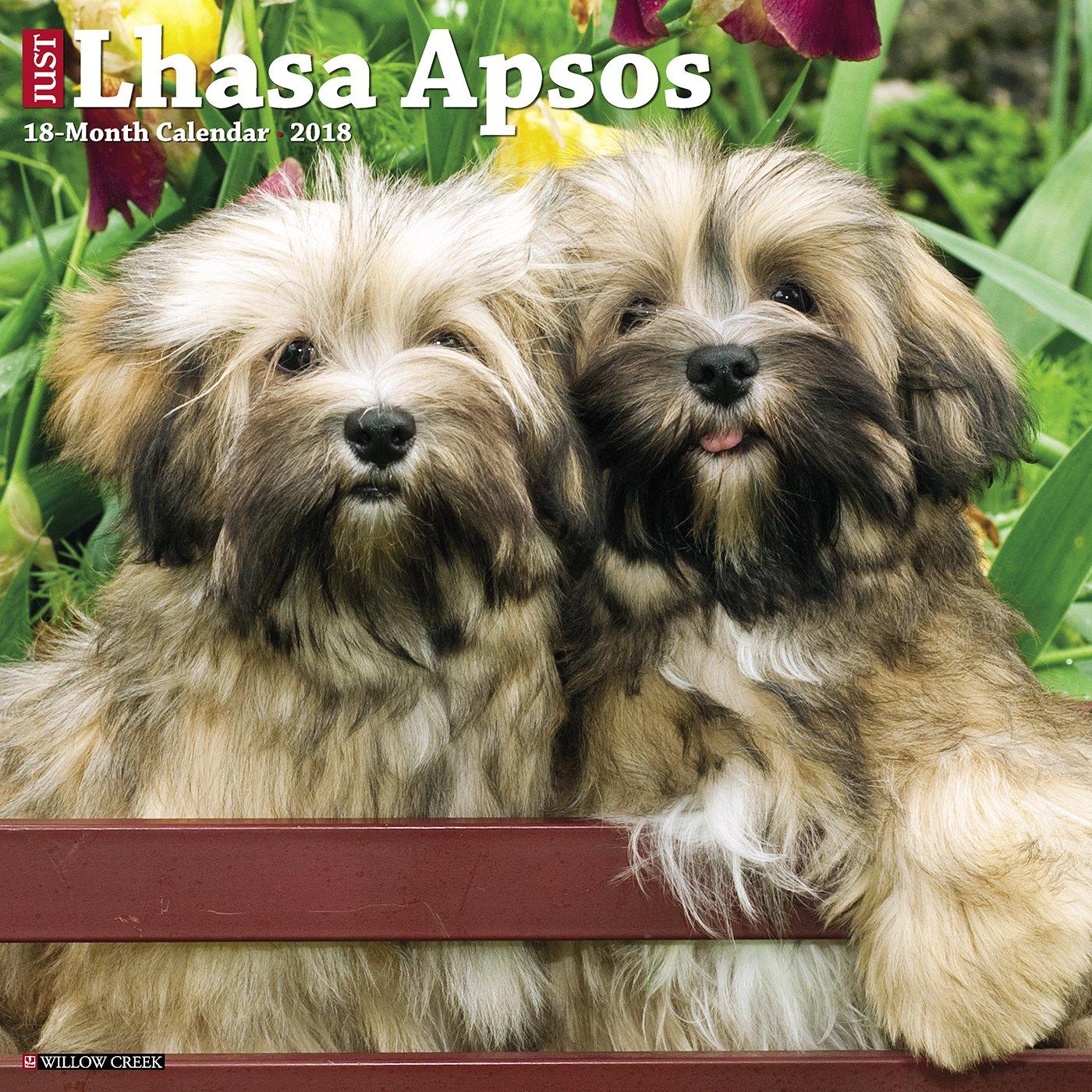 just-lhasa-apsos-2018-calendar