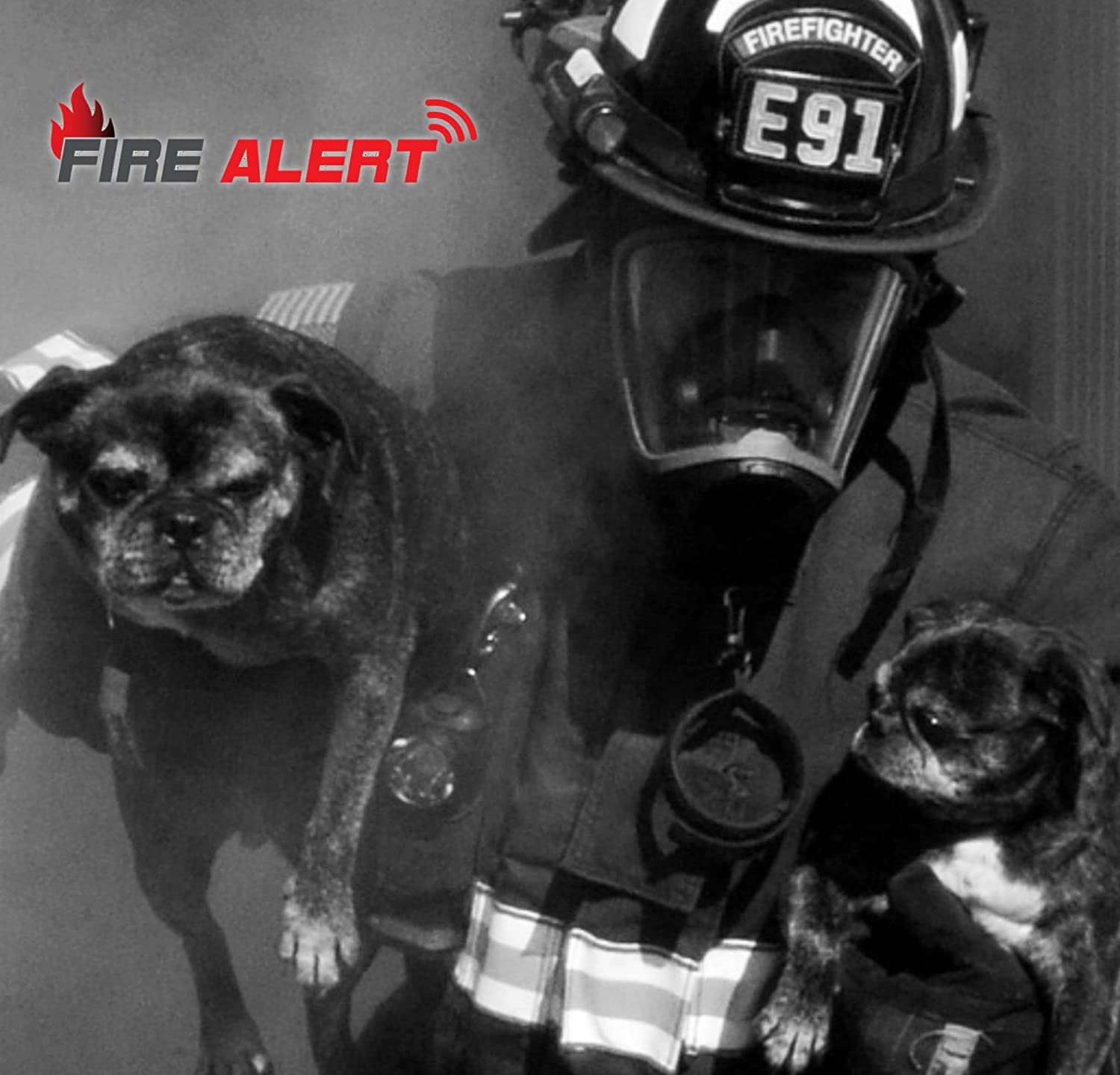 Fire Alert DIY Home Emergency Kit for Mobile alerts of Smoke, CO, Water, and Freeze