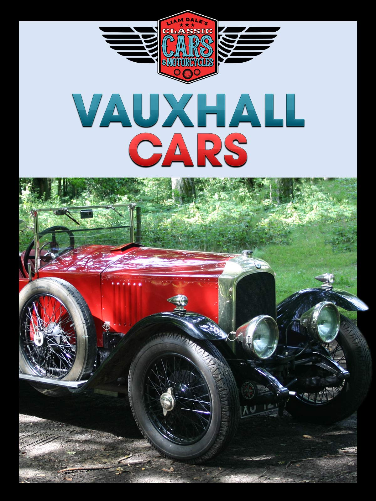 Vauxhall Cars: Liam's Dale's Classic Cars & Motorcycles