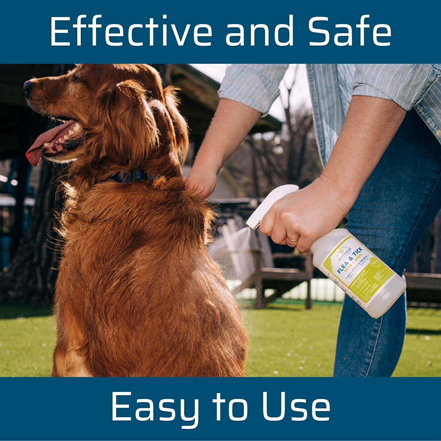 Amazon Com Wondercide Natural Products Flea Tick And Mosquito Control Spray For Dogs Cats And Home Flea And Tick Killer Prevention Treatment Eco Friendly And Family Safe 32 Oz Lemongrass Pet Supplies