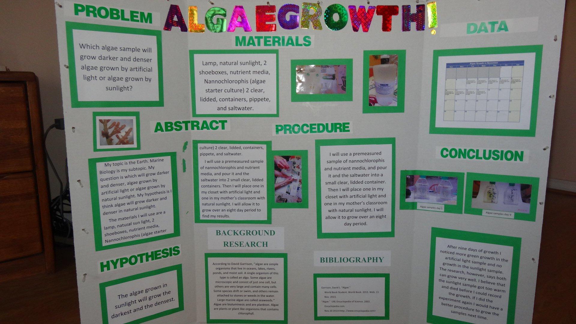 Algae Culture Kit: Spirulina
