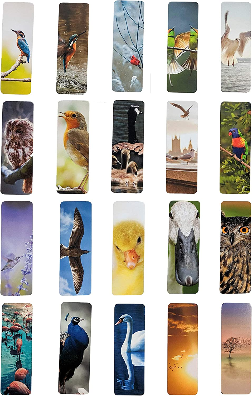 """Livin Harmony 