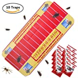 CHASOEA Cockroach Motel (10 Traps) Non-Poison Physical Efficient Pest Bug Killer Sticky Spiders & Ants & Roach Glue Trap