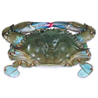 Raw Domestic Soft Shell Crabs (6 ct. Whales) - Frozen