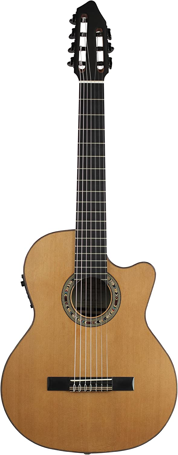 Top 10 Best 7 String Acoustic & Electric Guitar (2020 Reviews) 2