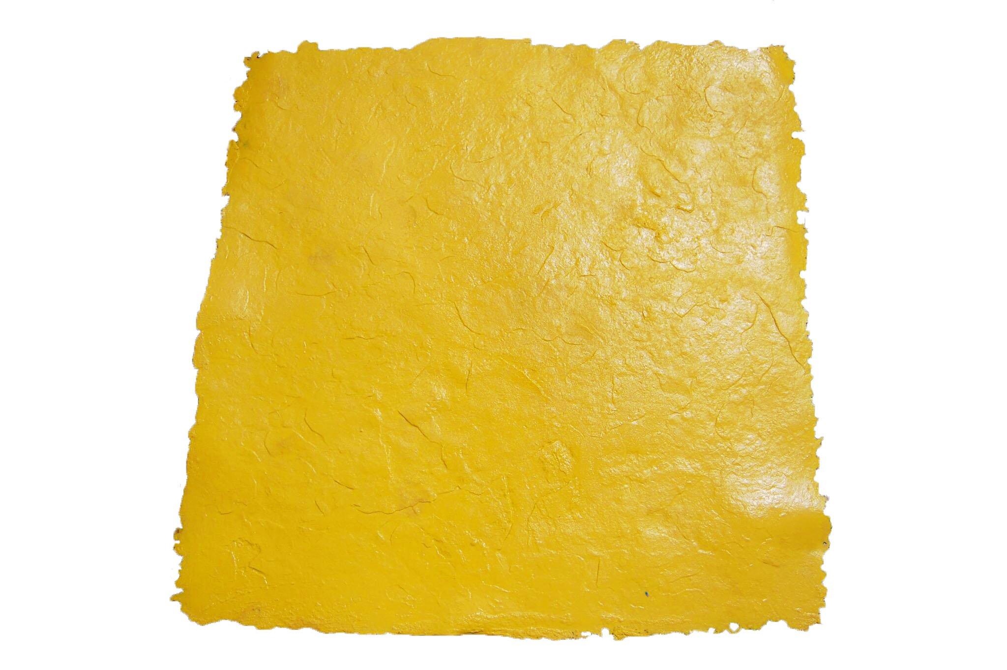 Colorado Sandstone (3 x 3 ft) Single Concrete Seamless Texture Skin Stamp Mat