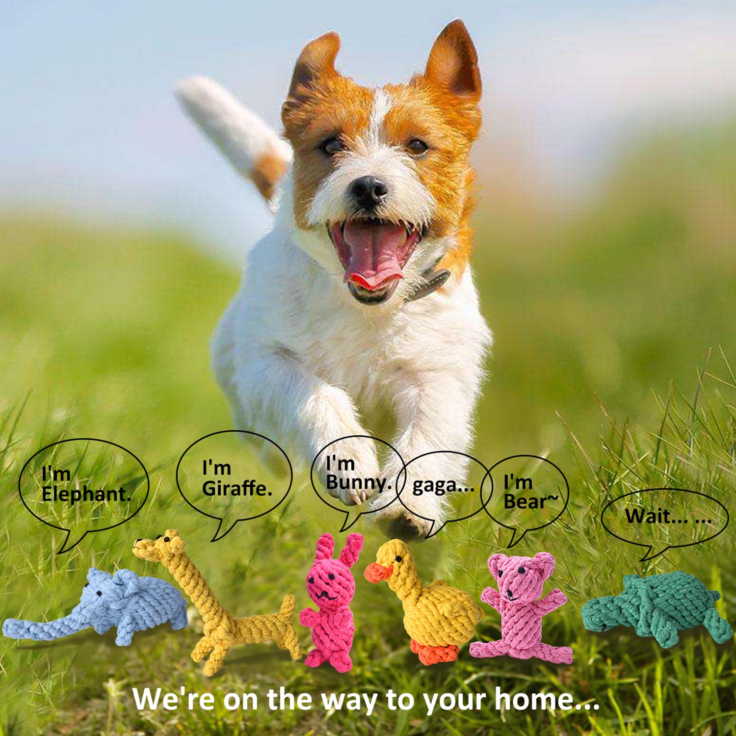 Dog Rope Toys Cute Animals Design, Cotton Puppy Toys for Small Dogs. Rope Dog Toy Set pack of 6 by TOYSBOOM (Image #2)