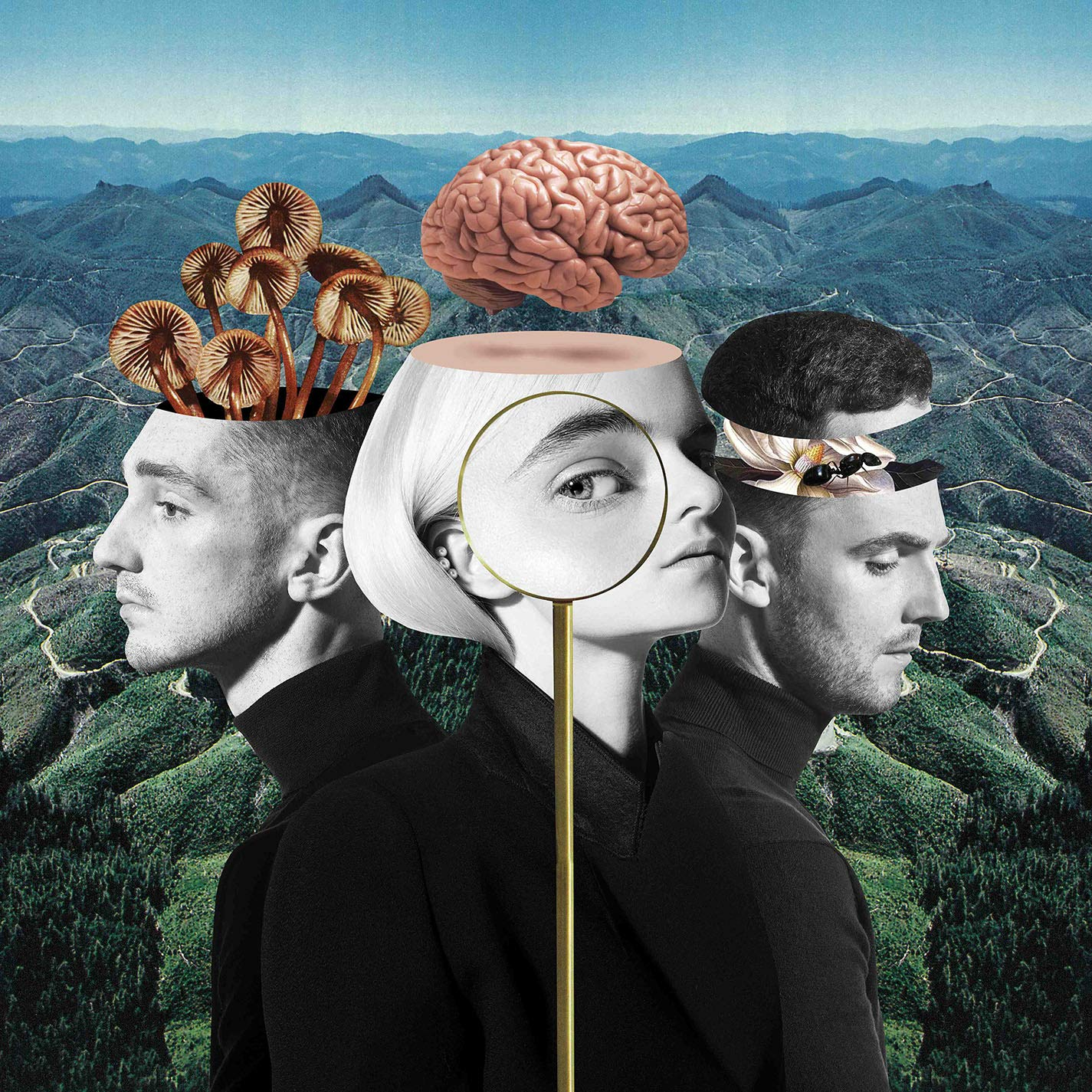 CD : Clean Bandit - What Is Love (CD)