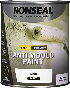 Ronseal Ampwm750 Anti Mould Paint White Matt 750ml Amazon Co Uk Diy Tools