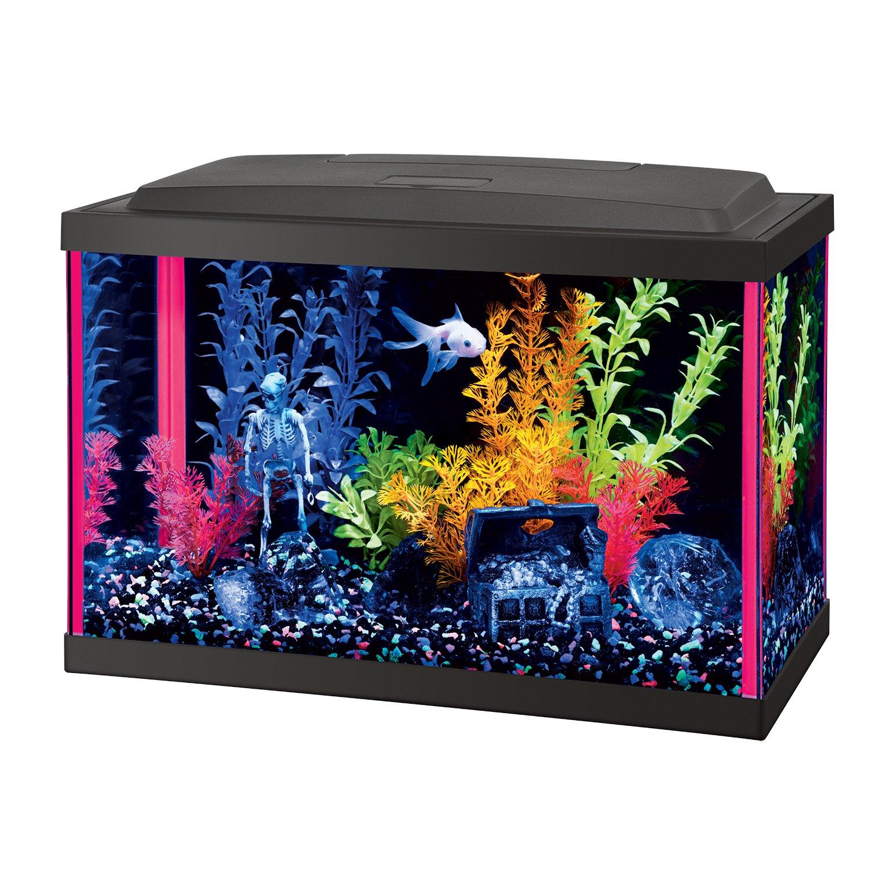 Amazon Aqueon Fish NeoGlow LED Aquarium Starter Kits Pet