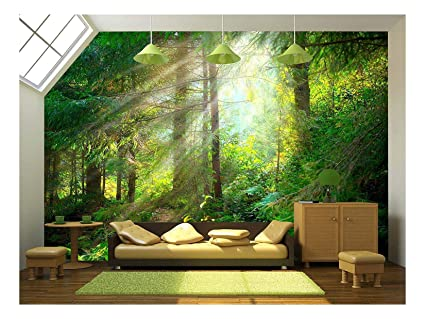 amazon com wall26 beautiful forest wallpaper canvas art wallimage unavailable