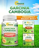 Pure Garcinia Cambogia Extract - 180 Capsule Pills, Natural Garcinia Supplement, Ultra High Strength HCA, Max XT Premium Detox Tablet for Men & Women